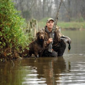 Hunting and Sporting Pets